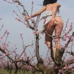 Bugyi nélkül a gyümölcsösben - 13. kép