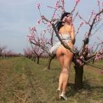 Bugyi nélkül a gyümölcsösben - 14. kép