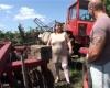 A nagyseggű traktoroslány