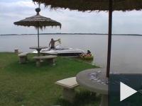 Seggkalapács a Dunaparton